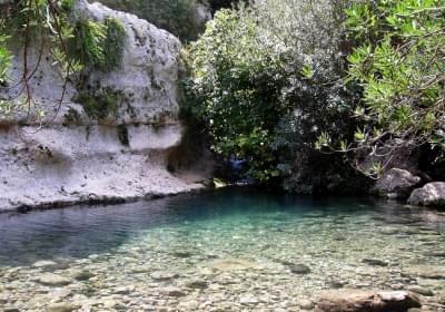 Agenzia/operatore Turistico Escursioni Camminasicilia
